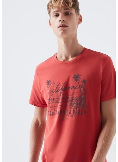 Mavi Erkek  Santa Monica Baskılı Tişört 066091-30734 Kırmızı